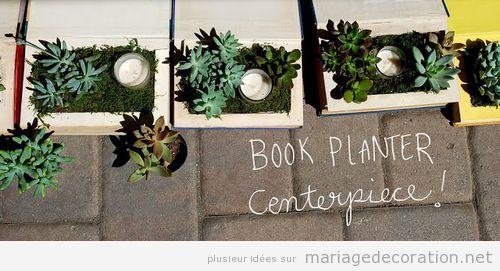 Centre de table original, un libre jardinière