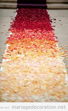 Déco mariage, un tapis pétales au chamin autel