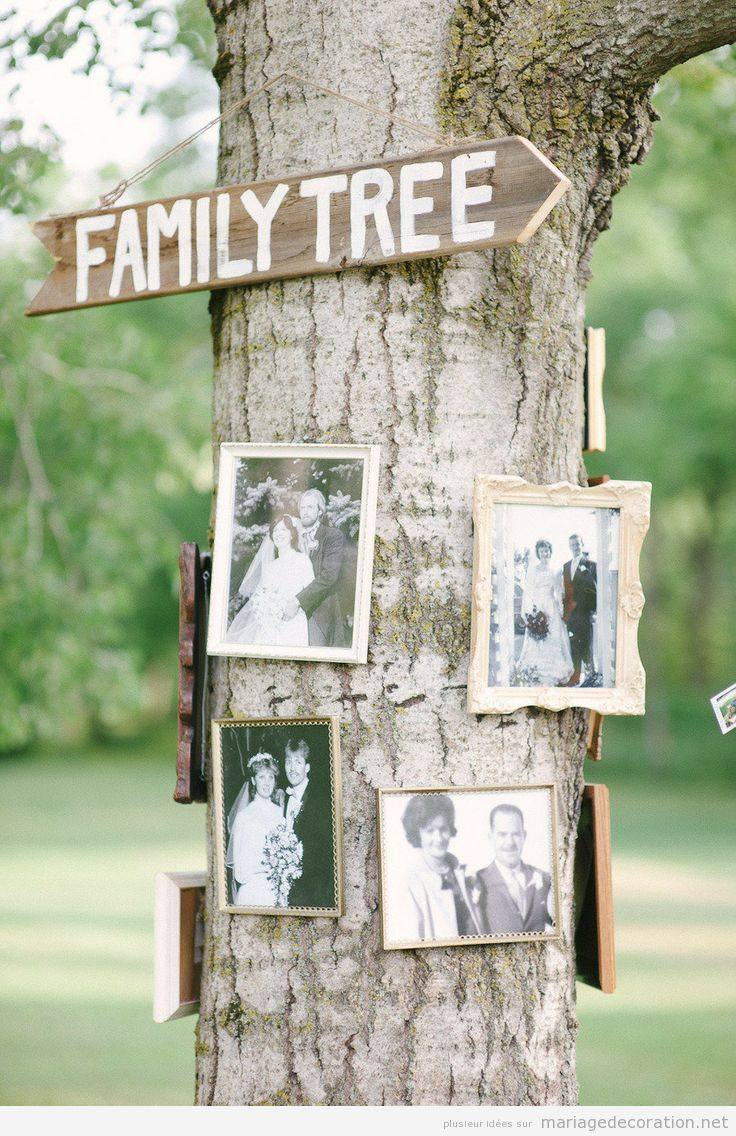 Id e d co mariage un arbre g n alogique avec des photos for Idee deco photo