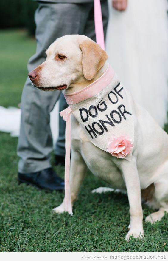 Idées déco mariage dog friendly ou avec chiens 8